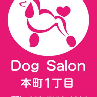 トリミング (ドッグサロン 犬の美容室)
