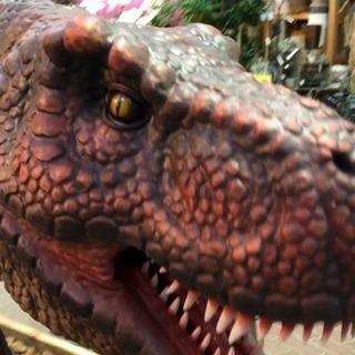 赤塚植物園で恐竜が大暴れ中!!!!の画像