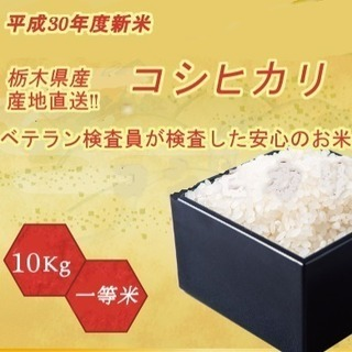 平成30年度新米 コシヒカリ 精米 10kg 栃木県北産