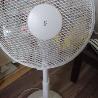 扇風機です‼️
