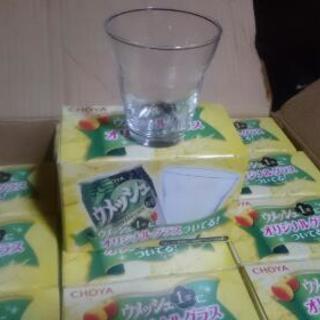 グラスコップ (中古未使用品)