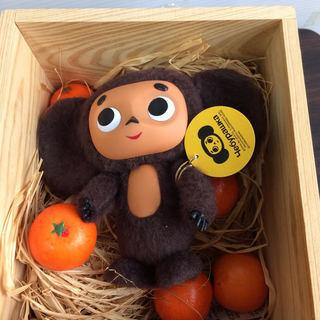 激レア 美品 チェブラーシカ オレンジの木箱入り フィギュア 調布市