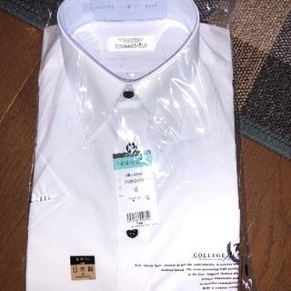 和歌山北高校 半袖カッターシャツ