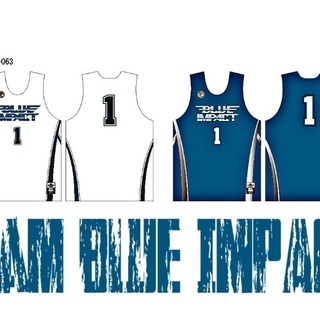 team BLUE IMPACT