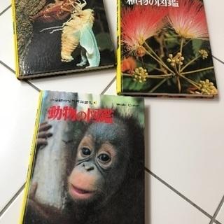 植物、動物、昆虫図鑑3セット