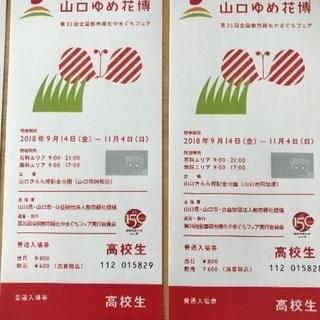 山口ゆめ花博 入場券半額でお売りします。