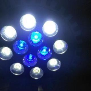 海水魚用LEDライト(青と白)