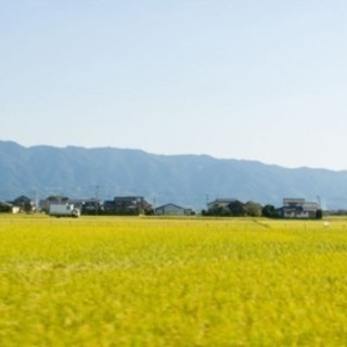朝倉カフェ会☕️田舎のカフェ会はのんびり旅気分♪ - 朝倉市