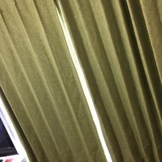 緑 カーテン