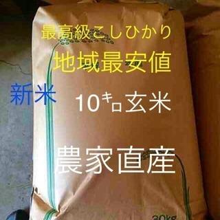 愛媛県産清流栽培こしひかり10kg玄米