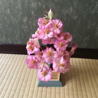 八重桜の飾りうります。