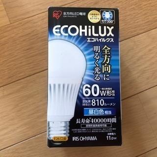 新品LED電球