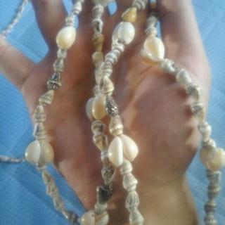 貝殻の首飾り