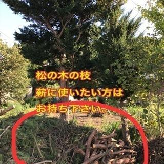 🔹🔸薪にしたい方🔹🔸伐採は終了‼️
