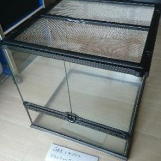 爬虫類ケージ<グラステラリウム4545>
