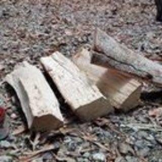 広葉樹カシの薪!1kg40円。長さ35cm。1年6ヶ月乾燥(含水率...