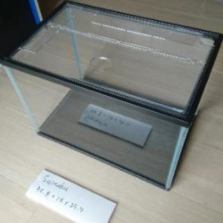 40cmガラス水槽