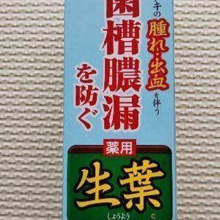 【新品】小林製薬/薬用ハミガキ生葉