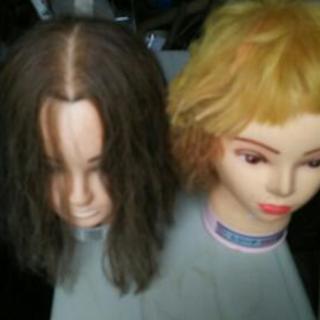美容師練習用ウィッグ