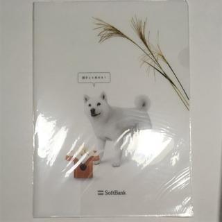 ソフトバンクおとうさん犬三枚セット