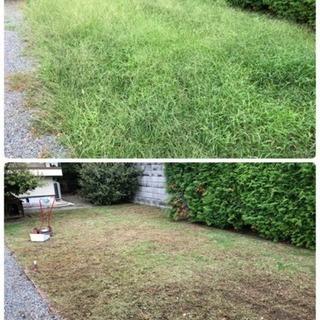 草刈り、草引き(草抜き)にお困りでないですか?