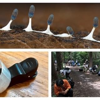 井の頭公園で自然観察・撮影会『変形菌』をモバイル顕微鏡で撮ってみよ...