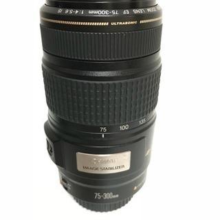 望遠レンズ❤️Canon EF 75-300mm IS USM手振れ補正