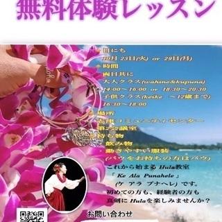 Hawaian Hula無料体験レッスン