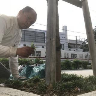 アパート・マンション緑地管理 庭の手入れ(所沢市 入間市川越市志木市)