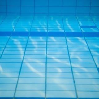 【1時間で弱点が分かる】全国大会入賞者が水泳教えます!