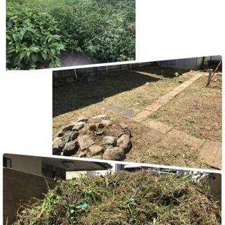 草刈り 芝刈り店 ツチヤガーデンホーム(所沢市 志木市さいたま市...