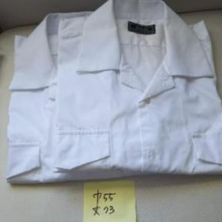 学生服 半袖開襟シャツ 4点 スクールシャツ
