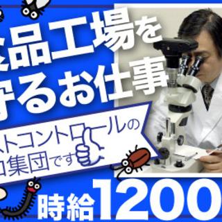 日収1万3,000円もok!食品工場等での衛生管理サポートスタッフ...