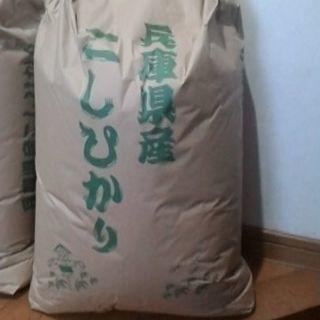 29年度兵庫県産 コシヒカリ 玄米30kg