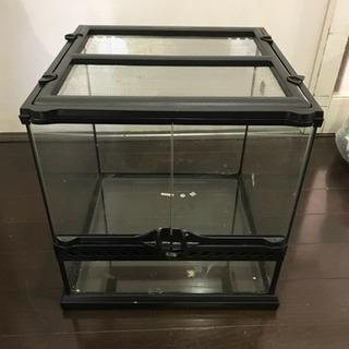 爬虫類ケージ グラステラリウム3030