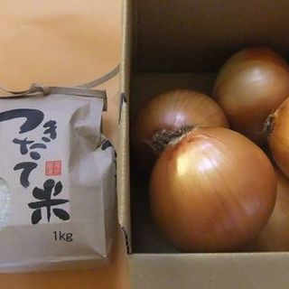 〔農産物〕新米コシヒカリ1Kg・淡路島玉ねぎ3Kg お試しセット