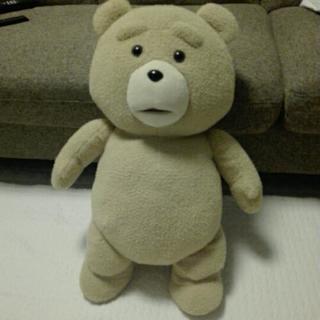 TED ぬいぐるみ XL