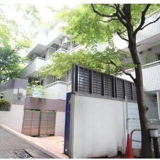 石川町駅近い、生活便利、女性限定