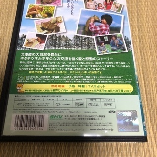 🔴9️⃣900円‼️映画子ぎつねヘレン‼️】の【DVD‼️】と【...
