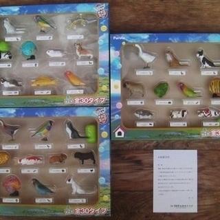 【フルタ】チョコエッグコレクションボックス■ペット動物シリ…