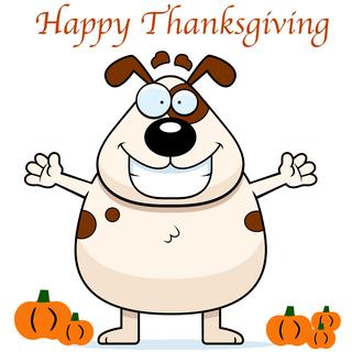 So American Thanksgiving リトルアーティス...