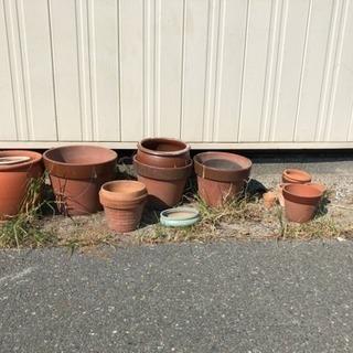鉢 サイズは色々です!