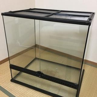 グラステラリウム 6060