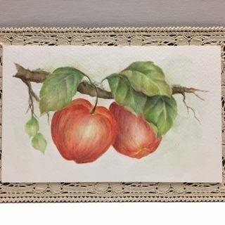 """簡単楽々水彩画 """"Delicious Apples"""""""
