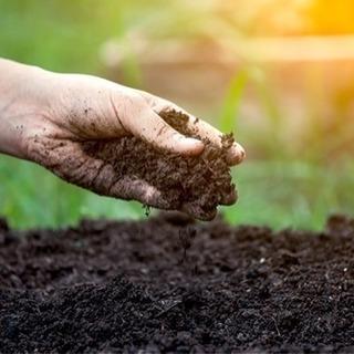 土取り放題!無料で差し上げます。埋め立て、盛り土、畑、園芸に。腐...