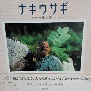 大雪の峰々 ナキウサギ写真集 帯付き【ムベの本棚】