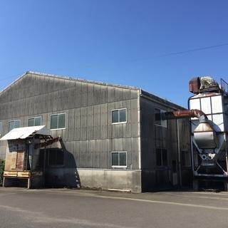 倉庫あげます。350坪程度。移築や部材取りにいかがですか。
