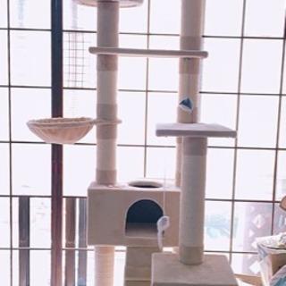 (取引中)綺麗な色のキャットタワー♪3000円