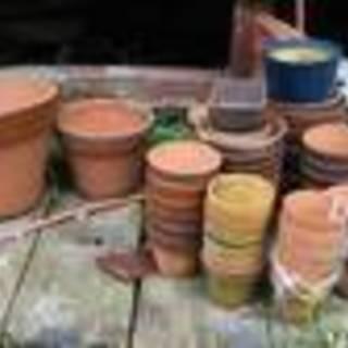 植木鉢 大小多数あります