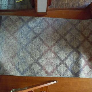 ホットカーペット 89×179cm 状態良好